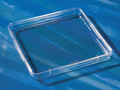 Corning® 245 mm Square BioAssay Dish without Handles, not TC-treated