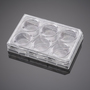 Corning® BioCoat™ Control Inserts with 1.0 µm PET Membrane in four 6-well Plates, 6/Pack, 24/Case