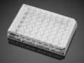 Corning® BioCoat™ Poly-D-Lysine 48-well Clear Flat Bottom TC-treated Multiwell Plate, with Lid, 5/Case