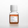Corning® Fetal Bovine Serum, 50 mL, Regular, USDA Approved Origin