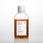 Corning® 500 mL Fetal Bovine Serum, Heat Inactivated, South American Sourced