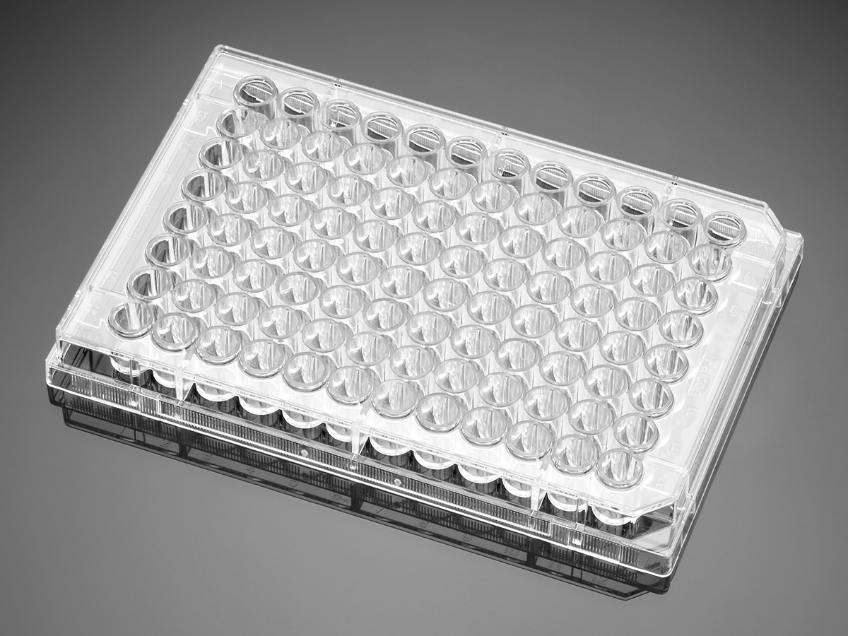 Falcon® 96-well Clear Flat Bottom Not Treated Cell Culture
