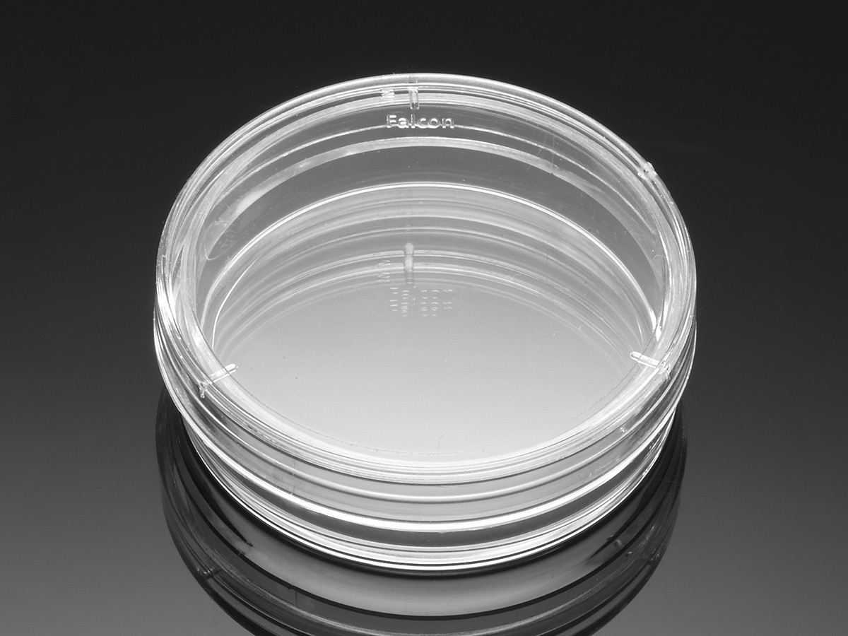 Falcon 174 35 Mm Tc Treated Easy Grip Style Cell Culture Dish