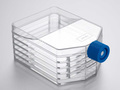 Falcon® 875cm² Rectangular Straight Neck Cell Culture Multi-Flask, 5-layer with Vented Cap