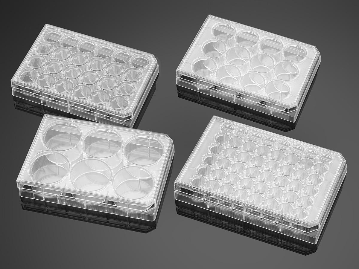 Falcon® Plates