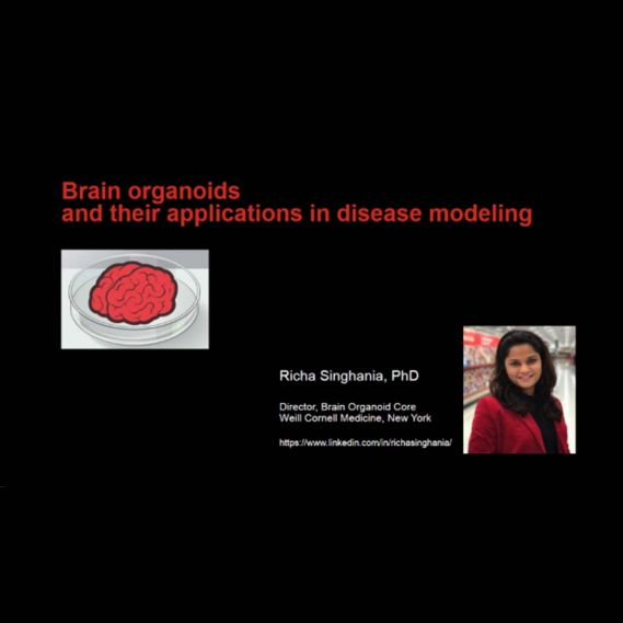 Organoids Master Class: Brain Organoids & Their Application in Disease Modeling