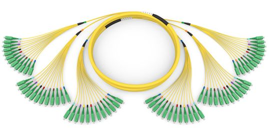 Indoor Multifiber Cable Assemblies