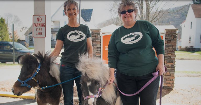 Tender Grace Miniature Horse Therapy