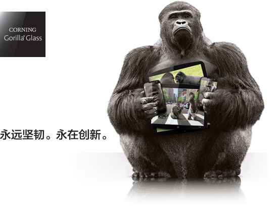 Gorilla Glass NBT